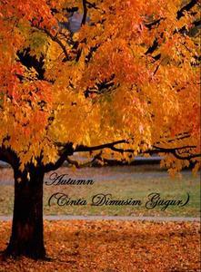 Cerpen Autumn Cinta di Musim Gugur