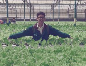 Cerpen Kunjungan Amazing Farm di Lembang