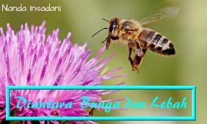 Di Antara Bunga dan Lebah